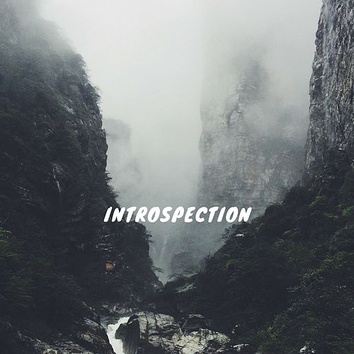 Introspection by KA
