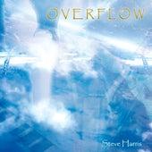 Overflow by Steve Harris