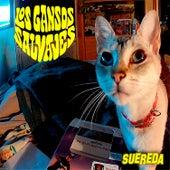 Suéreda by Los Gansos Salvajes