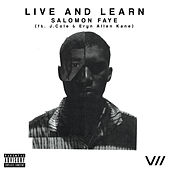 Live and Learn by Salomon Faye