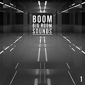 Boom, Vol. 1 - Big Room Sounds by Various Artists