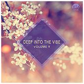 Deep Into the Vibe, Vol. 9 by Various Artists