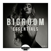 Bigroom Essentials, Vol. 3 by Various Artists