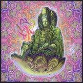 Bhajan Anandi Kirtan, Vol. 5 by Arjun & Guardians