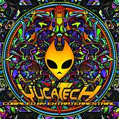 Yucatech - EP by Various Artists
