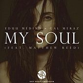 My Soul (feat. Matthew Reed) by Gal Meraz