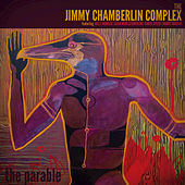 The Parable by Jimmy Chamberlin Complex