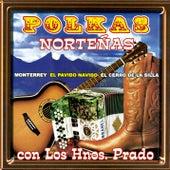 Polkas Norteñas by Los Hermanos Prado