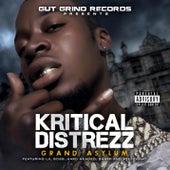 Grand Asylum by Kritical Distrezz