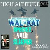 High Altitude (feat. Species, Yola & Sleeper) by Walkat
