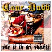 Put It in My Pocket by Cane Dubb