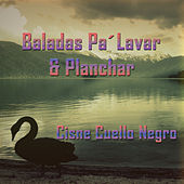 Baladas Pa' Lavar & Planchar: Cisne Cuello Negro by Various Artists
