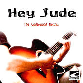 Hey Jude by The Underground Electrics