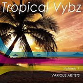 Tropical Vybz, Vol. 1 by Various Artists