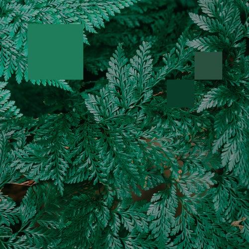 Metaphor to the Floor EP by Nebraska