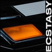 Ecstasy by Leo