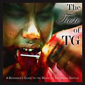 The Taste of TG (A Beginner's Guide to the Music of Throbbing Gristle) by Danny Howells
