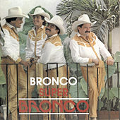 Play & Download Super Bronco by Bronco | Napster