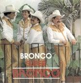 Super Bronco by Bronco