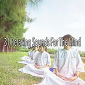 31 Relaxing Sounds For The Mind by Sounds of Nature Relaxation