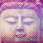 35 Brain Training Sounds by Exam Study Classical Music Orchestra