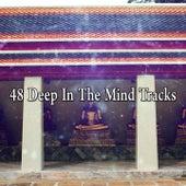 48 Deep In The Mind Tracks by Deep Sleep Meditation
