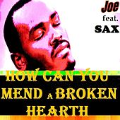 HOW CAN YOU MEND A BROKEN HEART (Live) by Joe