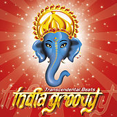 India Groovy: Transcendental Beats by Various Artists