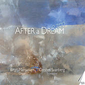 After a Dream by Various Artists