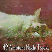 42 Ambient Night Tracks by Ocean Sounds Collection (1)