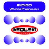 What Is Progressive by Indigo