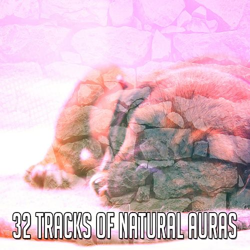 32 Tracks Of Natural Auras by Ocean Waves For Sleep (1)