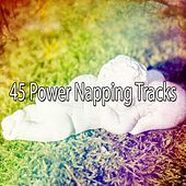 45 Power Napping Tracks by Baby Lullaby (1)
