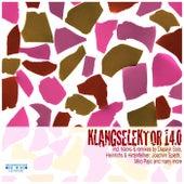 Klangselektor 14.0 by Various Artists