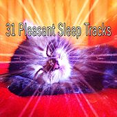 31 Pleasant Sleep Tracks by Smart Baby Lullaby