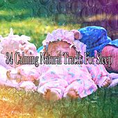 34 Calming Natural Tracks For Sleep by Nature Sound Series