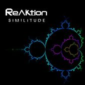 Similitude by The Reaktion