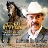Corridos de Caballos by Pedro Rivera