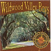 Play & Download When I Get Back To Georgia by Wildwood Valley Boys | Napster