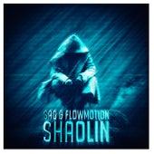 Shaolin by Flowmotion
