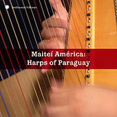 Play & Download Mateí América: Masters of the Paraguayan Harp by Various Artists | Napster