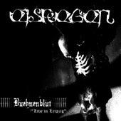 Play & Download Bühnenblut - Live in Leipzig by Eisregen | Napster