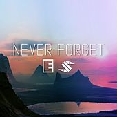 Never Forget by Surface