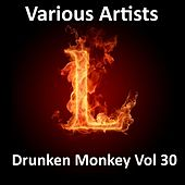 Drunken Monkey, Vol. 30 by Various Artists