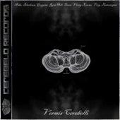 Vermis Cerebelli by Various Artists