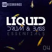 Liquid Drum & Bass Essentials, Vol. 04 - EP by Various Artists