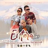 Mi Vida Entera (Remix) by Pisando Fuerte