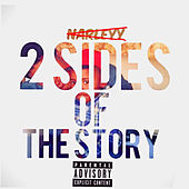 2 Sides of the Story by Narleyy