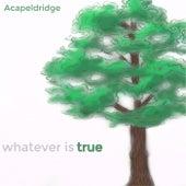 Whatever Is True by Acapeldridge