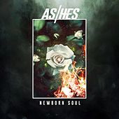 Newborn Soul by Ashes